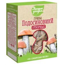 Dried mushrooms FOREST LANDS Boletus (cardboard), 45 g